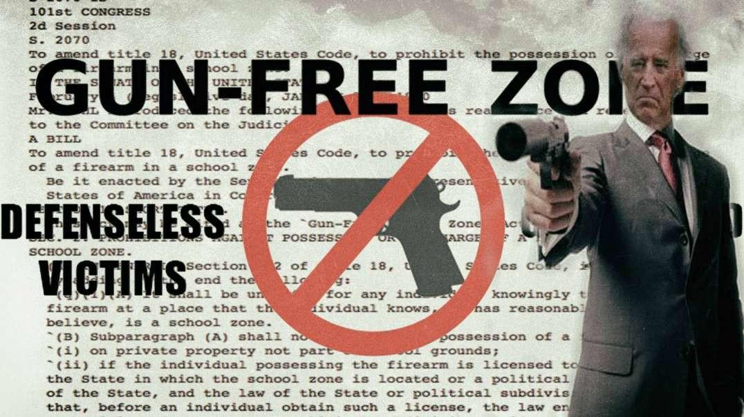 The Anti-Milita Strategy for Gun Control.mp4