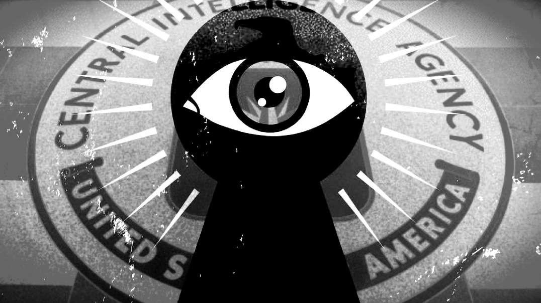 Pedophiles, Mossad/CIA Blackmail & HARPA Gun Control