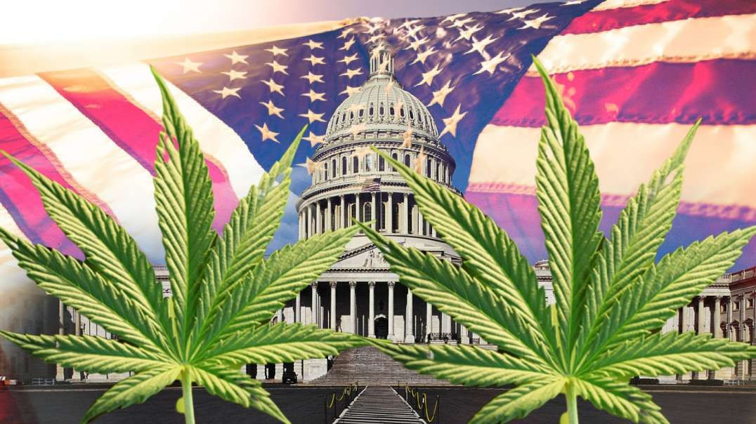 Feds Fear NULLIFICATION of Pot Prohibition