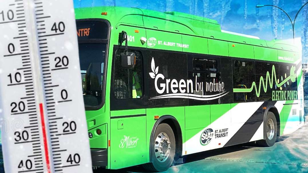 Electric Buses Batteries Freeze to Death, California Kills Small Businesses