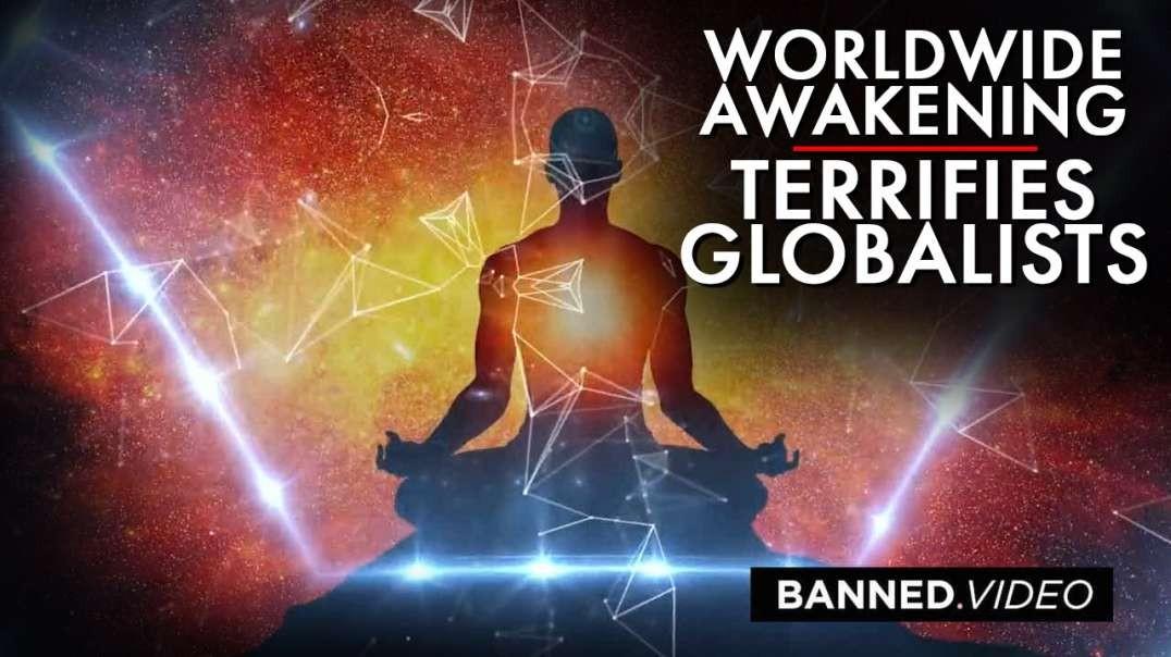 Learn How The Worldwide Awakening Terrifies Globalists
