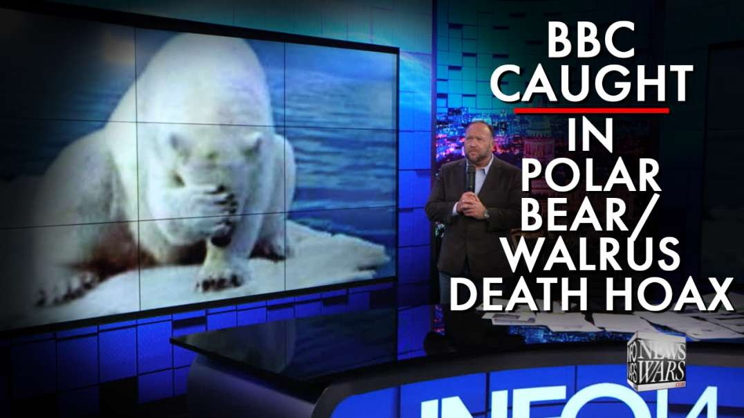 BBC Caught In Polar Bear / Walrus Death Hoax