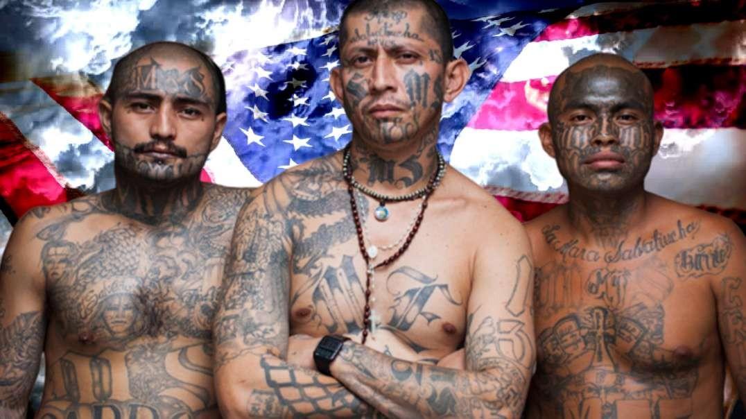 They Escaped MS-13 in El Salvador, Now MS-13 in Virginia Terrorizing Migrants & Americans