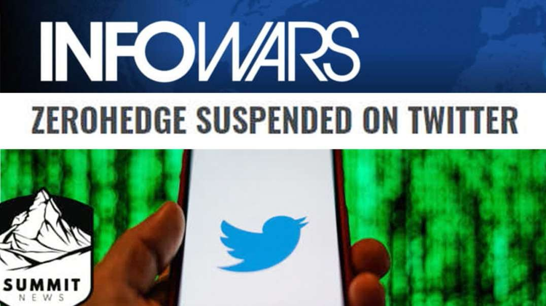 Zero Hedge Banned By Twitter For Questioning Coronavirus Official Story