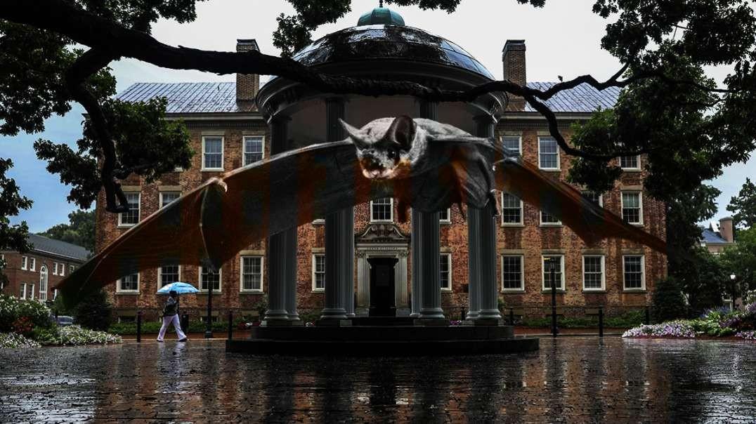 BREAKING: Chinese Bat / Coronavirus Chimera Experiments at UNC Chapel Hill