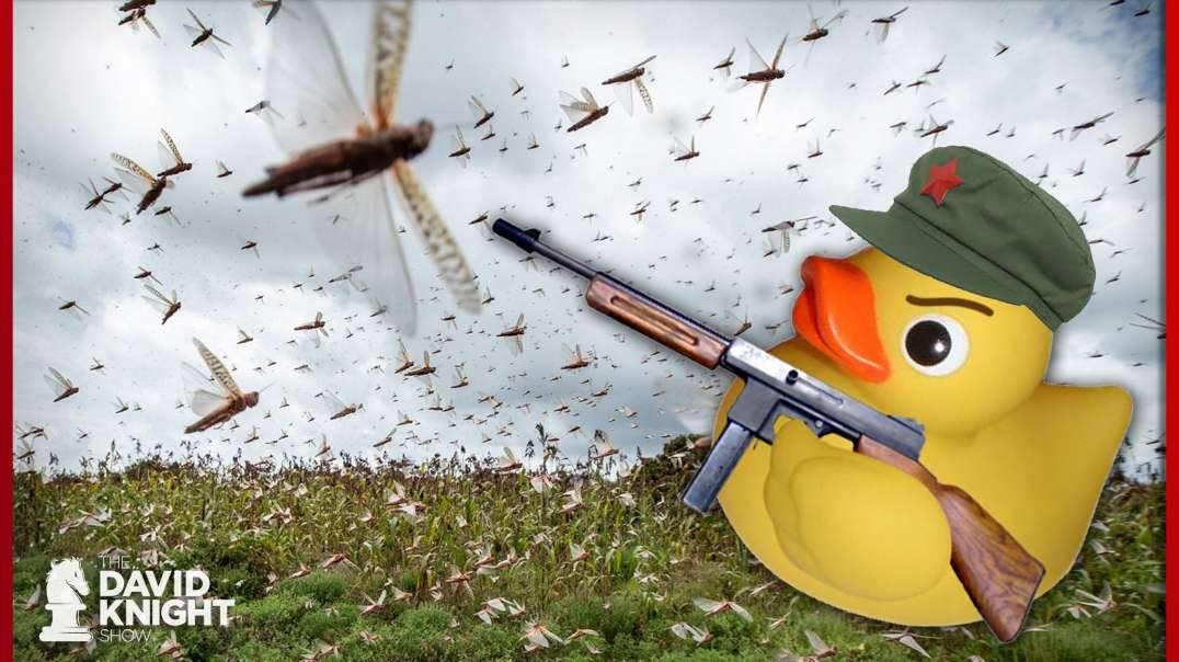 Ducks & Locusts — A Parable Warning Us of Govt. & Media Lies