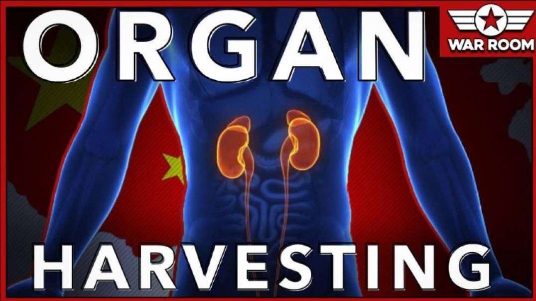 Let's Talk About Chinese Organ Harvesting As Well As Coronavirus
