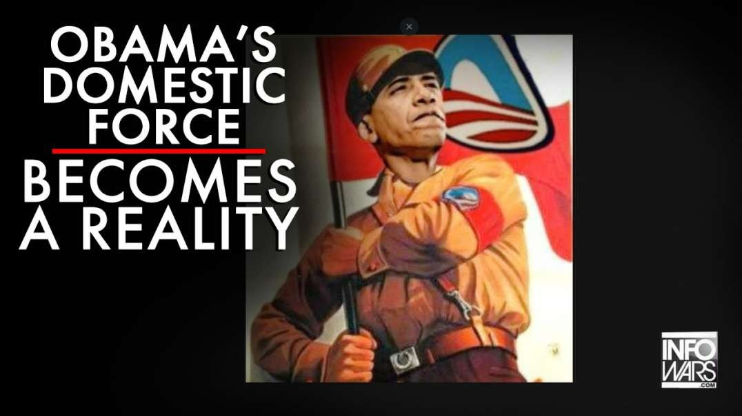Obama's Domestic Force Becomes A Reality in America