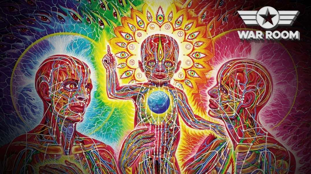The Truth About DMT And Creation