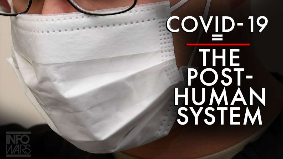 Covid-19 = The Posthuman System