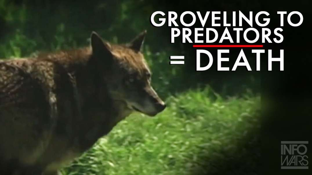 Grovelling to Predators = Death