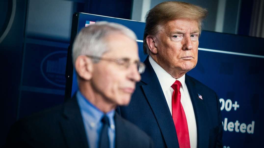 How Trump Can Defeat Fauci Tomorrow