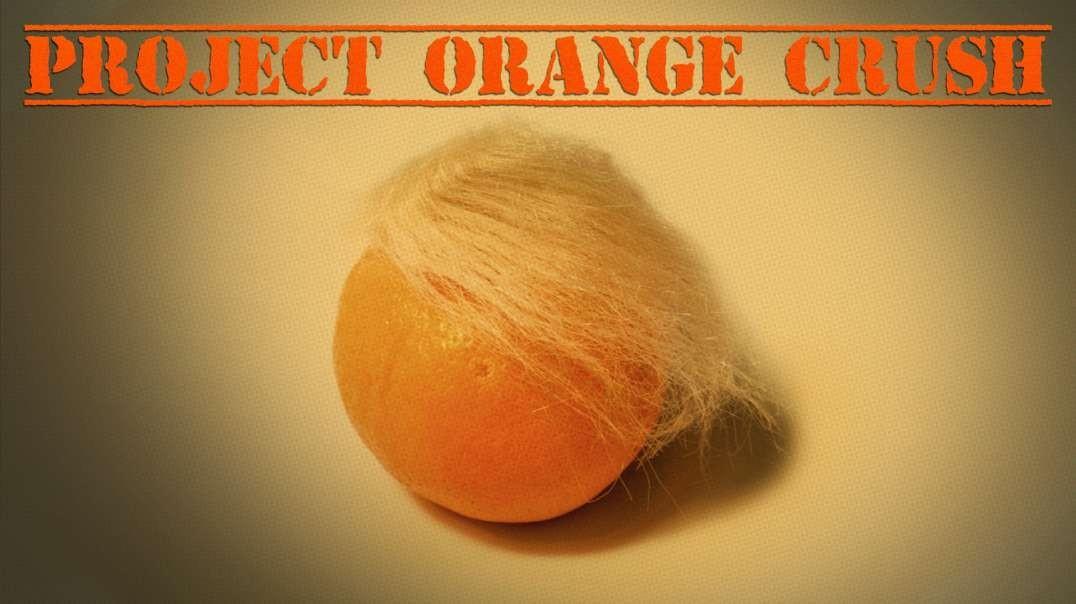 "Establishment Republicans Launch ""Project Orange Crush"" In Florida To Defeat Trump"