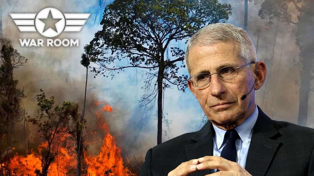 Medical Tyranny And Environmental Tyranny Tag Team To Enslave The Planet