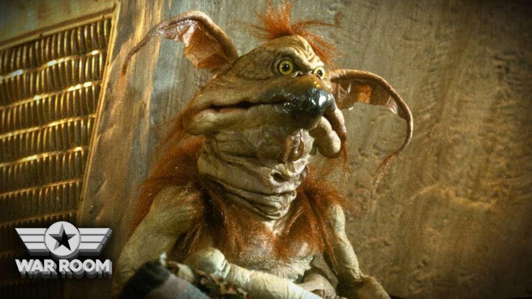 HIGHLIGHTS - Jabba The Hutt's Pet
