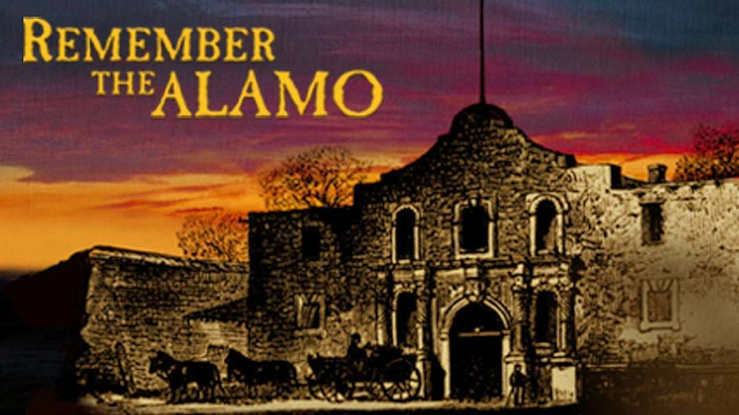 HIGHLIGHTS - We Forgot the Alamo